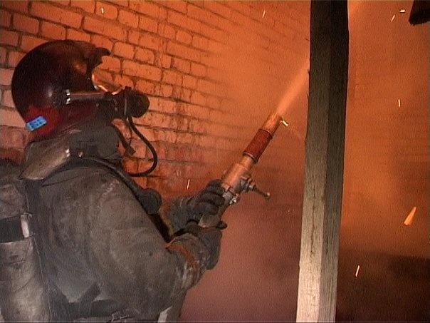 Спасатели ликвидировали пожар в Курортном районе